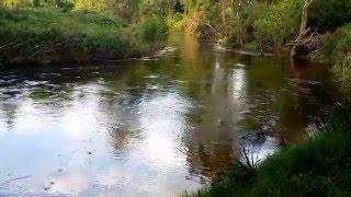 Bega Australia  city photos gallery : River in the Eco-village in Bega, Australia