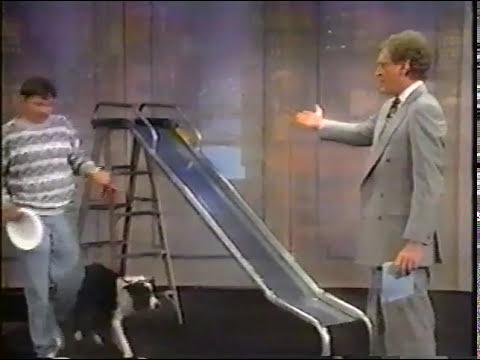 david letterman stupid pet tricks