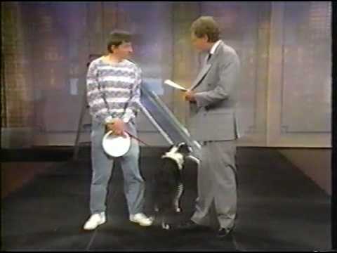 Letterman: Stupid Pet Tricks 1982-1997
