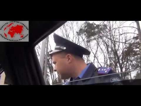 Гаи остановило  Правый Сектор)) - DomaVideo.Ru