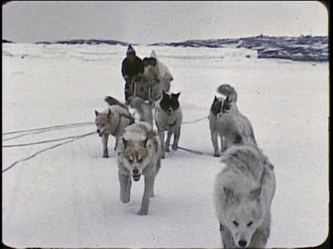 An Inuit/Eskimo family in the Arctic 1959