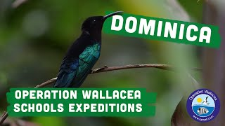 Operation Wallacea runs conservation research expeditions to 14 different countries worldwide. These expeditions are designed with specific wildlife ...