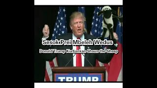 Donald Trump Berkurban Shaun The Sheep - Sesok Prei Mbeleh Wedus