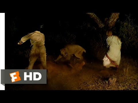 Out Of Africa (3/10) Movie CLIP - Lions Attack Karen's Ox (1985) HD