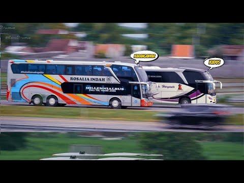 WOW! 8 Daerah  Yang Terkenal Memiliki Bus Banter di Indonesia