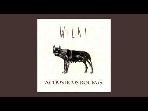 WILKI / ROBERT GAWLIŃSKI - Cień w Dolinie Mgieł (AR; audio)