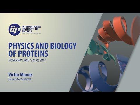 Protein Folding Studies using Single-Molecule FRET Experiments (part 3) - Victor Munoz