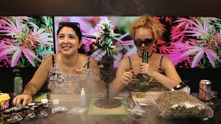The 420 Lifestyle Show: BC Bud Day by Pot TV