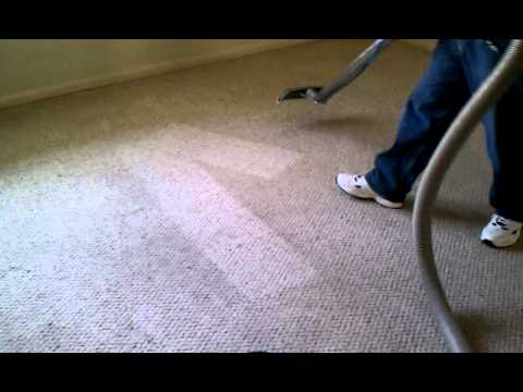 Best Carpet Cleaning Chemical