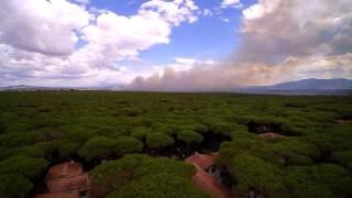 Principina a Mare Italy  city photo : Incendio a Principina a Mare - Immagini dalla strada e dal drone