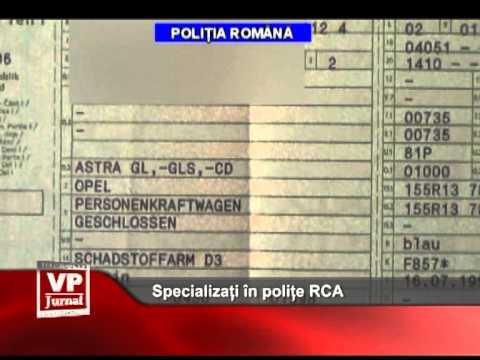 Specializati în polite RCA