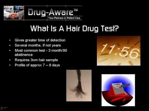 how to drug test with hair