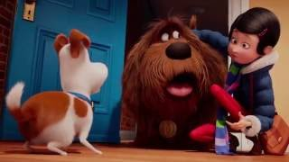 Pets - A Vida Secreta dos Bichos - Trailer Oficial 3 Dublado full download video download mp3 download music download