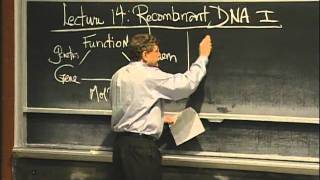 Overview Of Recombinant DNA, Excerpt 1 | MIT 7.01SC Fundamentals Of Biology