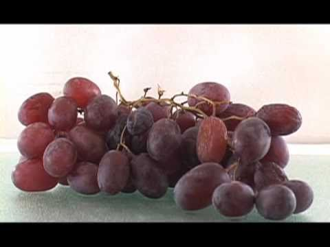 Watch Grapes Turn Into Raisins In 30 Seconds.
