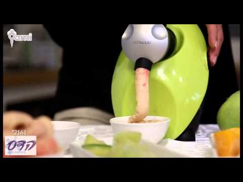 Fruit Dessert Maker (frozen yogurt)