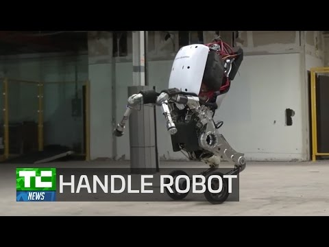 Boston Dynamics' Handle robot does all the heavy lifting
