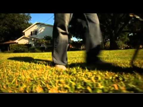 Florida-Friendly Fertilizing