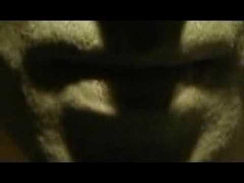 Tekst piosenki Armia - Wyludniacz po polsku