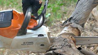 2. STIHL MSA 200 Cordless Chainsaw Review