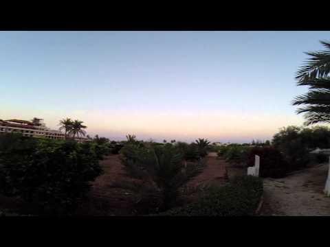 Video of Auberg-Inn: The House of Eggplants