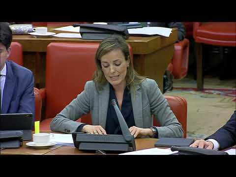 Carmen Navarro Lacoba en la Comisión de Transición...