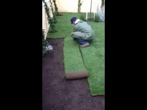 Realizzazione giardino privato - Ciampino (RM) Novembre 2012