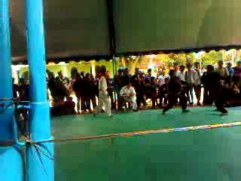 PSHT - dalam perebutan atlit terbaik di ogan komering ilir sumsel dan PSHT menjadi juara umum putra maupun putri,...