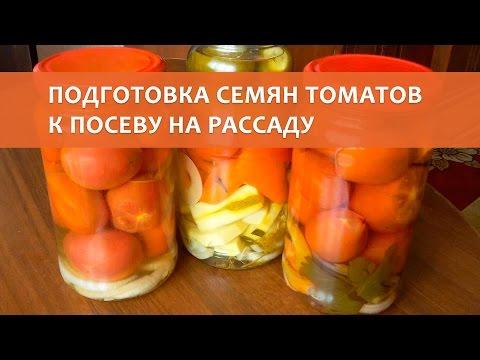 Подготовка и посев семян томатов на рассаду 64