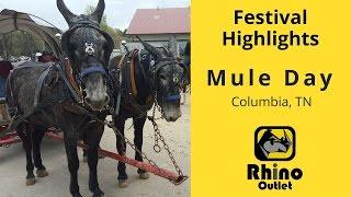 Mule Day Festival - Columbia TN