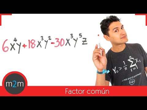 Common Factor - HD