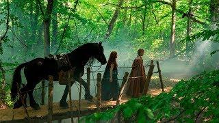 Family Fantasy Adventure Films    Albion  The Enchanted Stallion