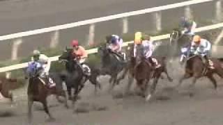2011年兵庫ジュニアグランプリ