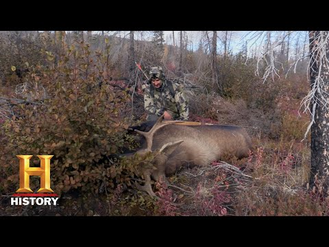 Alone: Breaking Down a Moose (Season 6) | Exclusive | History