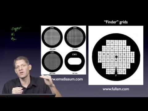 Part 4: Sample Prep: Grids - G. Jensen