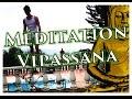 Vipassana - 10 jours de méditation dans le silence