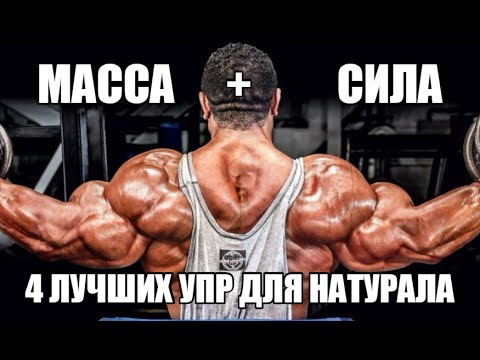 МАССА+СИЛА - 4 ЛУЧШИХ упражнения для НАТУРАЛА
