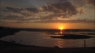 BIG SKY COUNTRY /  SF BAYLANDS SKY SUNRISE & SUNSET ((HD)) Time-Lapse Menlo Park Ca