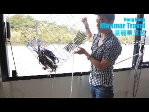 澳洲昆士蘭省黃金海岸6 天暑期親子團 暢遊:華納兄弟電影世界、直升機翱翔之旅、歡樂農莊、觀鯨遊船河、海洋世界、遊船捉蟹之旅、UGG 羊毛皮靴製造工場(生效出發日期:2017 年7 月12 日至8 月31 日止)