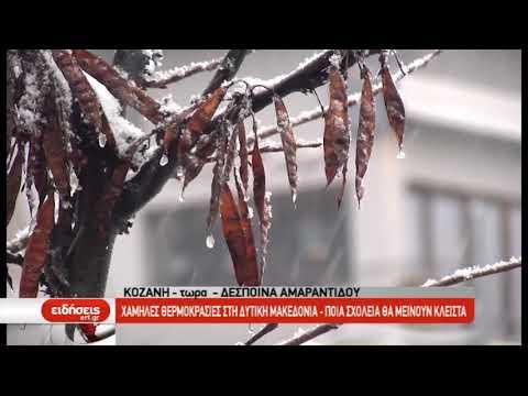 Χαμηλές θερμοκρασίες και κλειστά σχολεία σε Κοζάνη και Γρεβενά | 7/1/2019 | ΕΡΤ