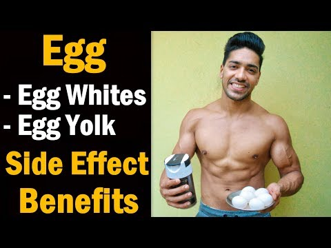 Fat burner - How Many Egg In A Day - Health Benefits & Side Effect