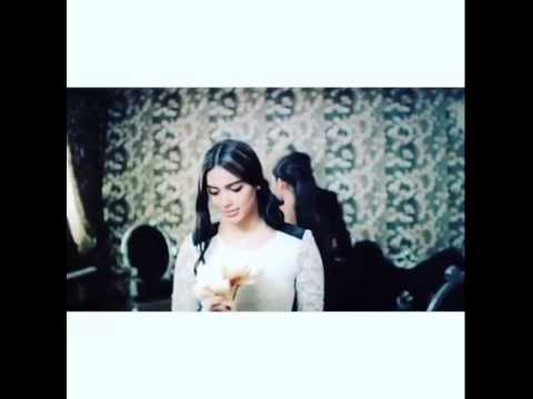 Video Shadmehr Aghili Hesse Khoobie Demo 2015 download in MP3, 3GP, MP4, WEBM, AVI, FLV February 2017