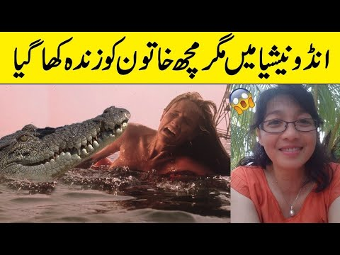 Indonesia Female Scientist Is Eaten Alive By Crocodile After It Jumps Up An 8ft High Wall And Drags