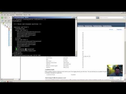 ¿Cómo configurar puertos no conocidos en Firewall ESXi?