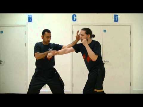 Mousavi Martial Arts Academy Bristol - Tiger & Snake Triple Strike Kung Fu Technique (видео)