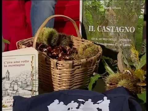 FESTA DELLA CASTAGNA DI MONTEGROSSO: INTERVISTE AL SINDACO GIULIANO MAGLIO ED A GRAZIANO VIAZZO