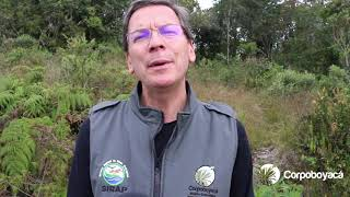 Director de Corpoboyacá habla del Páramo de Pisba