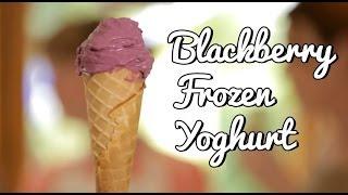Blackberry Frozen Yoghurt Recipe - YouTube