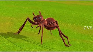 Itsy bitsy spider | Incy wincy spider - 3D Animation English Nursery rhyme song for children