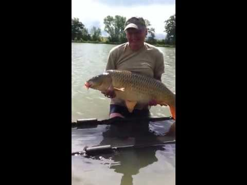 36lb Common at Jonchery, Jul 2013